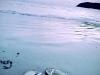 pulaupayar