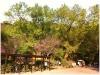 taiwan_03032012_061