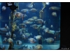 Korea - Day 5 - COEX Aquarium - 32